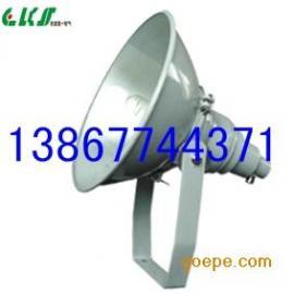 NTC9200防震投光灯1000W