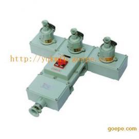 BXS防爆动力检修电源插座箱(挂式)