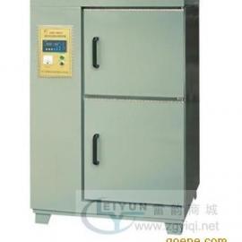 养护箱,60B标准水泥养护箱,上海雷韵养护箱