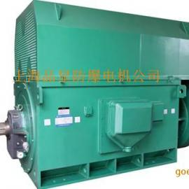 YPRKK变频高压电机 6KV/10KV水泵电机