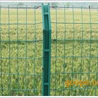 C型柱护栏网,c型柱护栏网价格,c型柱