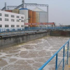 SPR高浊度污水净化系统
