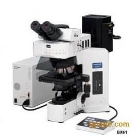 BX51-1000倍地理学标记原子显微镜报价