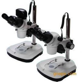 体视标记原子显微镜-1000倍地理学标记原子显微镜报价