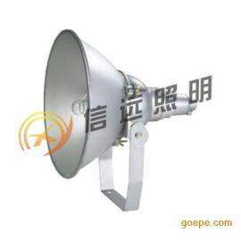 防震型投光灯NTC9210