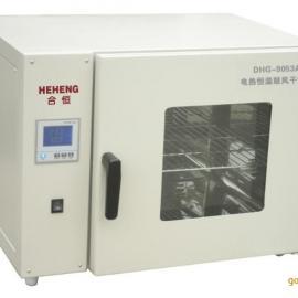 恒温鼓风干燥箱 300度精密烘箱 烤箱