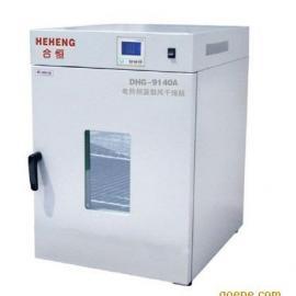 立式鼓风干燥箱 数显鼓风干燥箱 恒温箱