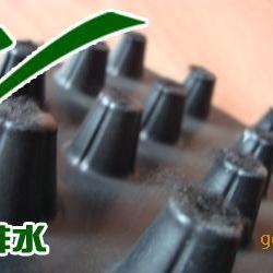 供应排水板|塑料排水板|绿化排水板|疏水板|阻根刺排水板