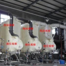 氯化钠含盐废水处理结晶蒸发器