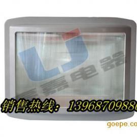 NSE9720-J35应急通路灯 NSE9720-J35(35W)