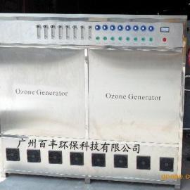 400克臭氧发生器 养鸡大型臭氧发生器