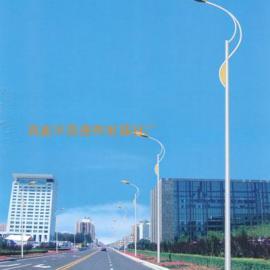 新农村建设 单臂道路灯