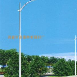 路灯厂家 单臂太阳能道路灯