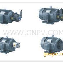 OO5-43BO OO3-43BO OO2-43BO内插式油泵电机
