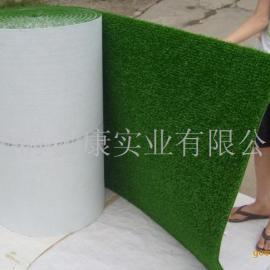 淘金草、金毡、粘金毯