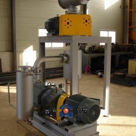 干式螺杆真空泵不锈钢