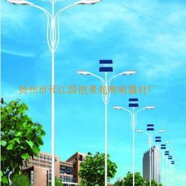 25W太阳能路灯生产厂家