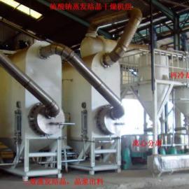 针对硫酸钠的含盐废水蒸发结晶器
