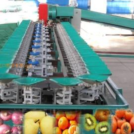 苹果自动选果机,山东新型水果分果机,柑桔桃子自动选果机