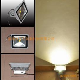 30W/50W集成LED投光灯