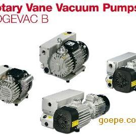 SV100B莱宝真空泵\真空泵油品GS77、叶片、滤芯