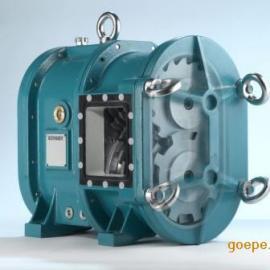 博格转子泵
