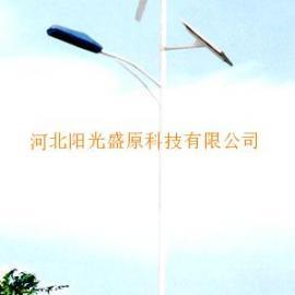 太阳能风光互补灯