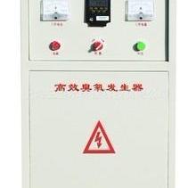高效臭氧发生器
