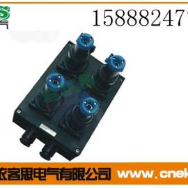 防水防尘防腐电源插座箱FXX-4K