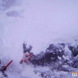南宫大棚扫雪机-南宫道路扫雪机-清雪设备