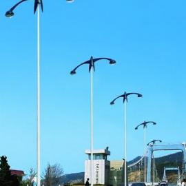 江苏扬州5米道路灯