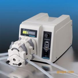 蠕动泵WT600-2J/保定兰格恒流泵WT600-2J