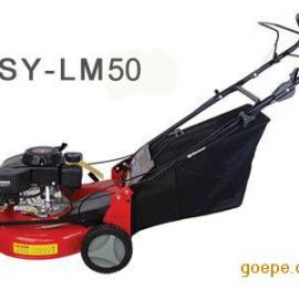 20寸自走草坪机修剪机汽油动力-顺雨