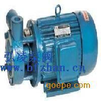 1W型单级漩涡泵|旋涡泵