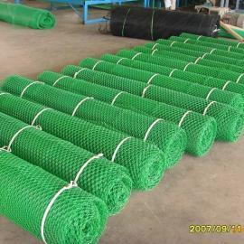 四川三维植被网