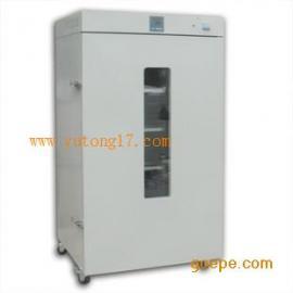 DHG-9420A立式电热恒温鼓风干燥箱250度