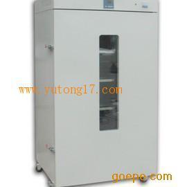 DHG-9620A立式电热恒温鼓风干燥箱250度