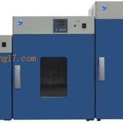 DHG-9035A立式电热恒温鼓风干燥箱300度