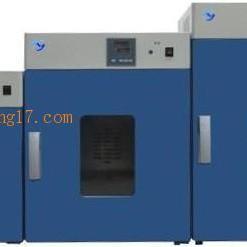 DHG-9145A立式电热恒温鼓风干燥箱300度