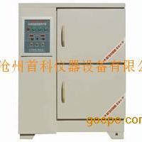 标准恒温恒湿养护箱(双开门) 40B标准养护箱