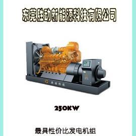 250KW东莞沼气发电机组|250Kw沼气发电机
