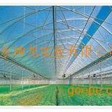 秦皇岛温室大棚阳光板,花卉大棚阳光板,日光温室大棚