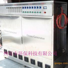 饮用水厂臭氧发生器 井水消毒臭氧发生器
