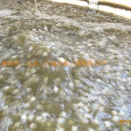 污水除臭装置