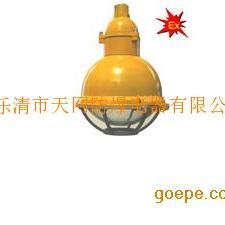 GB8050防爆无极灯,防爆防腐无极灯,防水防尘无极灯