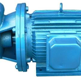 1W型漩涡泵,单级漩涡泵,铸铁旋涡泵