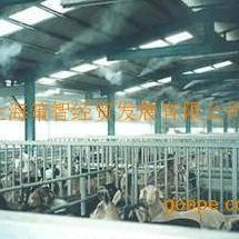 优价供应养殖专用加湿系统成套设备
