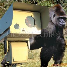 供应野生动植物保护观测远程夜视监控系统
