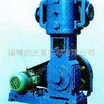 供应WL-100立式真空泵(图)