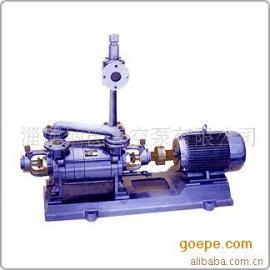 两级水环式真空泵|2SK系列两级水环式真空泵